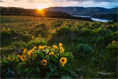 DSC0065-Sunset-at-Rowena-Crest-web